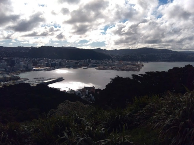 view from mt vic