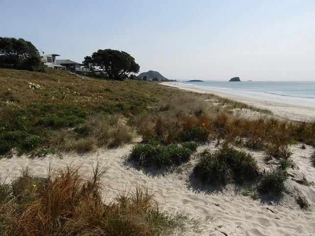 3 real beach